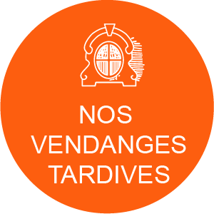 Jurque Vendanges Tardives